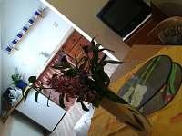 Kuchyňka - chalupa k pronájmu Domanín u Třeboně