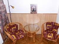 Ubytování v zahradě - chalupa ubytování Lomnice nad Lužnicí - 9