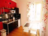 Apartmán Kapka - pohled na kuchyni