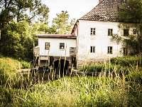 V těsném sousedství chaloupky- krásný starý mlýn s funkční vodní elektrárnou....