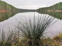 Staňkovský rybník - Plavsko