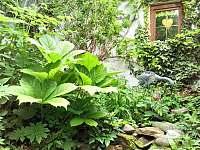 Zahrada - Plavsko