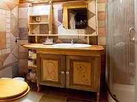 Žabovřeský Mlýn - koupelna a WC apartmánu v 1. patře - chalupa k pronájmu