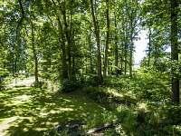 Žabovřeský Mlýn - zahrada