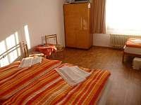 Ubytování u Lidušky - rekreační dům k pronájmu - 15 Třeboň-Branná