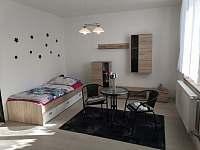 ubytování Starov v apartmánu