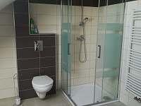 koupelna - apartmán k pronajmutí Borovany