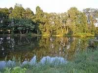 Náš rybník-35m od chalupy - Omlenička