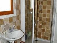 Koupelna s WC - apartmán k pronájmu Byňov u Nových Hradů