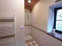 Apartmán v přízemí - koupelna - pronájem chalupy Lásenice