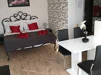 Obývák s ložnicí přízemí