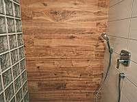 Sprcha v koupelně - Sviňovice