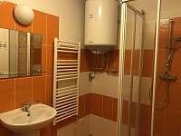 Koupelna - apartmán ubytování Lipno nad Vltavou