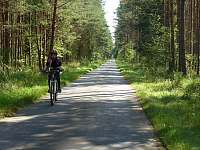 Krásné asfaltové cyklostezky a rovinatý terén - ideální pro rodiny s dětmi - Vlkov