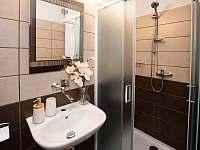 Koupelna - pronájem chalupy Rožmberk nad Vltavou