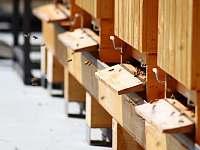 Včelín ( bát se nemusíte, máme hodné včeličky) - pronájem chalupy Varvažov