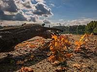 Rybník Naděje - pronájem chalupy Klec u Třeboně