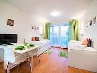 Relax Park - apartmán ubytování Třeboň - 9