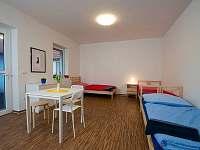 Apartmán Chlum u Třeboně - k pronájmu