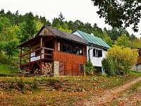 ubytování Zvíkovské Podhradí na chatě k pronájmu