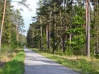 cyklostezky v okolí - Domanín
