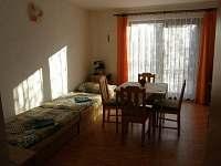 Chlum u Třeboně - apartmán k pronajmutí - 10