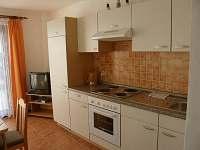 Chlum u Třeboně - apartmán k pronajmutí - 11