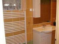 Apartmán k pronajmutí - apartmán - 14 Chlum u Třeboně