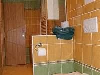 Apartmán k pronajmutí - apartmán k pronájmu - 15 Chlum u Třeboně