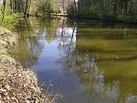 pohled na řeku - Lásenice