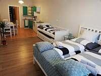 7 - apartmán k pronajmutí Třeboň