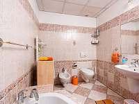 Koupelna - chalupa k pronajmutí Kardašova Řečice