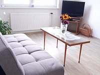 obývací pokoj s jídelnou - pronájem chalupy Vodňany
