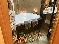 Koupelna apartmán v přízemí - rekreační dům k pronajmutí Třeboň