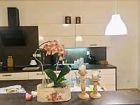 Kuchyně - apartmán v přízemí - rekreační dům ubytování Třeboň