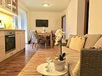 Obývací pokoj s kuchyní - podkroví domu 85m2 - Třeboň