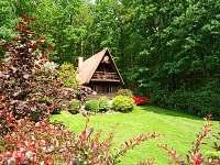Chata k pronájmu - dovolená Bazén Tábor rekreace Křída u Stádlce