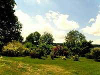 zahrada - pronájem chalupy Dudov u Malšic