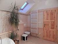 Podkrovní byt, koupelna s vanou, sprchovým koutem a wc. - apartmán k pronajmutí Mojné