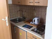 Apartmán 1 kuchyňský kout - k pronajmutí Zběšice