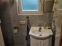 Koupelna, WC - chata k pronajmutí Veselí nad Lužnicí