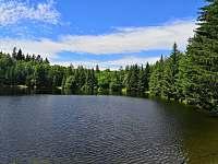 Rybník v okolí - Velký Pěčín