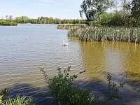 Příroda v okolí - Val