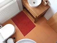 Apartmány Dlouhá louka: koupelna Pampeliška s umyvadlem, sprchou a toaletou - k pronájmu Trhové Sviny - Rejta