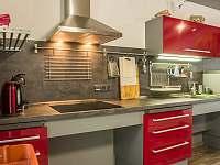 kuchyně - apartmán k pronajmutí Jindřichův Hradec - Rodvínov