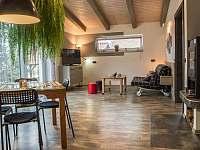 obývací pokoj - apartmán ubytování Jindřichův Hradec - Rodvínov