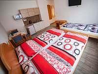 Červený apartmán - pronájem Kardašova Řečice