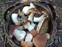 houbaření - Kunějov