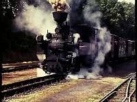 Parní vlak a úzkokolejka - Kunějov