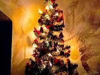 Vánoce na chatě - Kunějov
